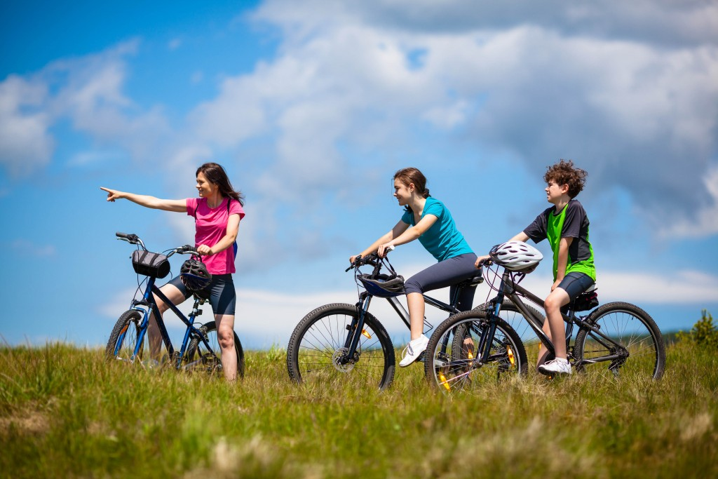 Tarka Trail Cycle Hire, Barnstaple, North Devon